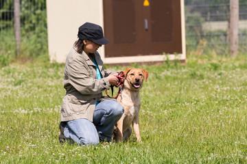 Hund und Trainerin bereiten sich vor
