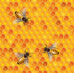 Bees and honeycells seamless background