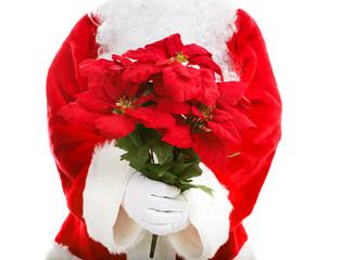 Santa Claus Holding Poinsettias