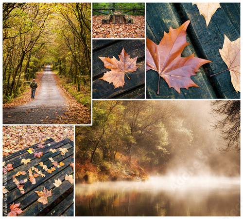 Autumnal collage of Fragas do Eume narural park
