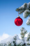 Christmas Red Bauble on a Pine Tree