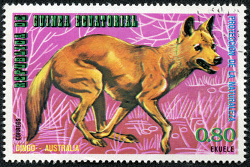stamp printed by GUINEA shows Dingo