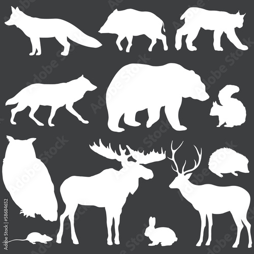 vector set of white forest animals silhouettes