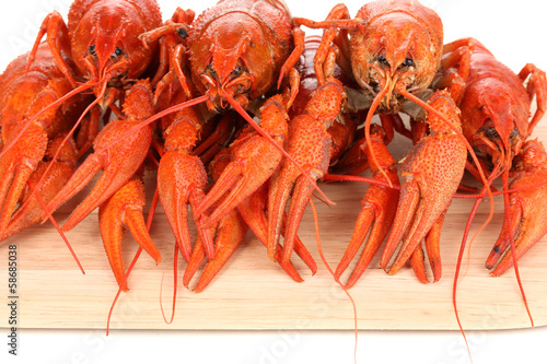 Tasty boiled crayfishes on chopping board close-up