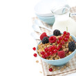 delicious homemade granola with fresh berries and milk, isolated