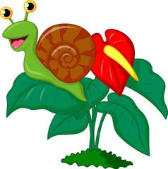 Cute snail cartoon on leaf