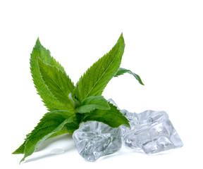 leaf mint and ice isolated on white background.