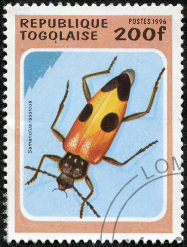 stamp printed in Togolese Republic shows beetle