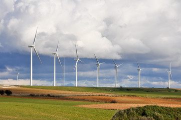 Wind turbines farm, Burgos (Spain)
