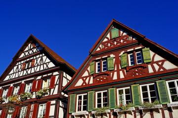 WOLFACH ( Schwarzwald ) - Altstadtpanorama