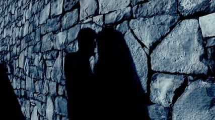 Shadow of a kissing couple in moon light