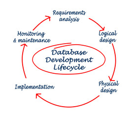 Database development lifecycle