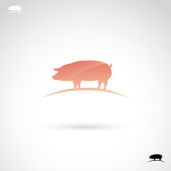 Pig label