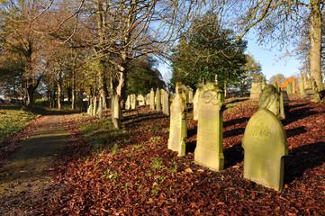 Autumn Graveyard