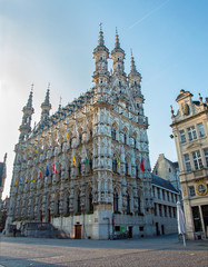 Leuven - Gothic town hall in morning