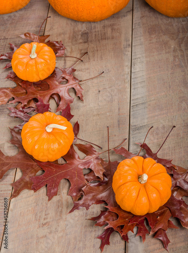 Pumkins and fall leaves for decoration
