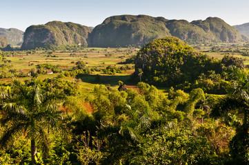 Mogotes in Vinale Valley, Cuba