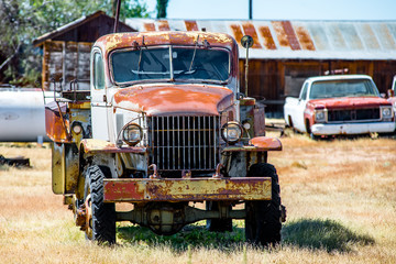 Old abandoned rusty chevy