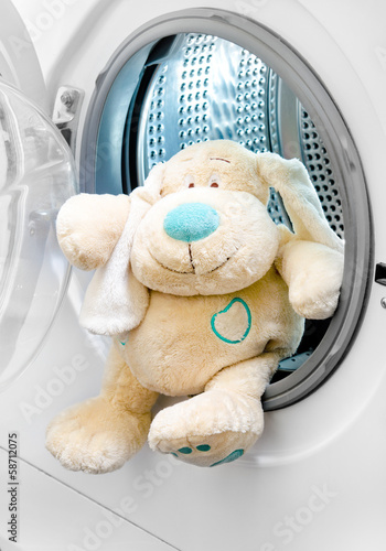 washing machine and   dog in clothes (delicate wash)