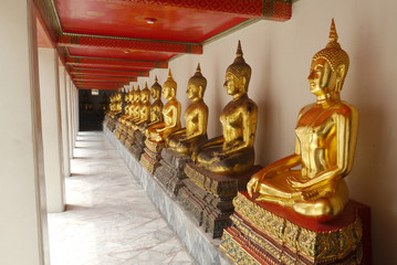 Buddha, Wat Pho thailand