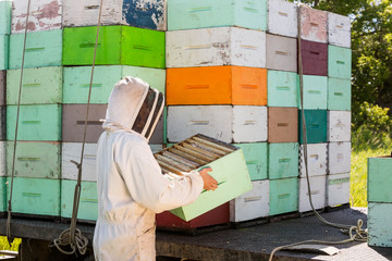 Beekeeper Unloading Honeycomb Crate From Truck