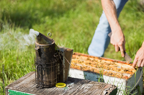 Bee Smoker With Apiarist Working On Farm