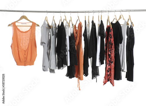 female fashion clothing on hangers