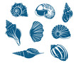 Blue shells and mussels set