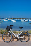 Formentera bicycle at Estany des Peix lake