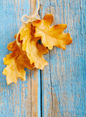 Blue wooden Autumn background