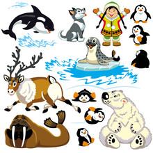 cartoon arctic set
