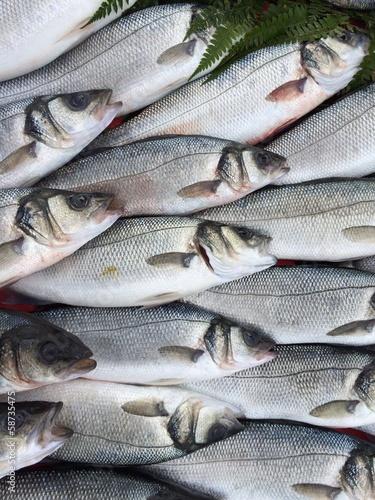 Satışa Sunulan Balıklar