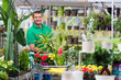 im gartencenter pflanzen kaufen