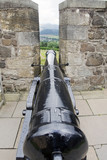 cannon between battlements of  castle