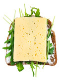 rye bread, cheese and fresh arugula sandwich