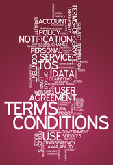 """Word Cloud """"Terms and Conditions"""""""