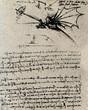 Leinwanddruck Bild - Flying device by Leonardo da Vinci