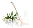 Room air refreshers with flowers isolated in white