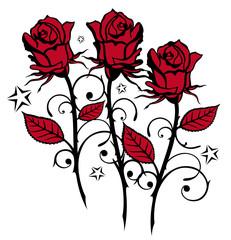 Rote Rosen, Blumen, Blüten, schwarz