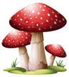 Red mushroom - 58768239