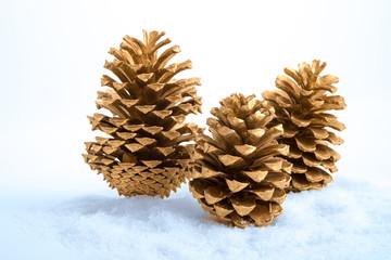 Drei Kiefernzapfen im Schnee