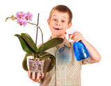 little boy is watering the flowers poster