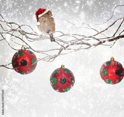 Christmas balls and sparrow bird on snowy branch