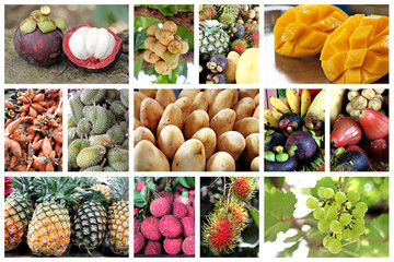 Many type of tropical fruits.