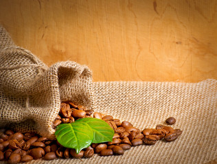 Coffee grains on sackcloth