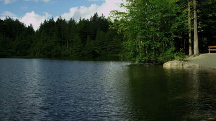 Lake shore forests northern hemisphere, Canada