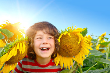 Happy young sweet boy in field off sunflowers