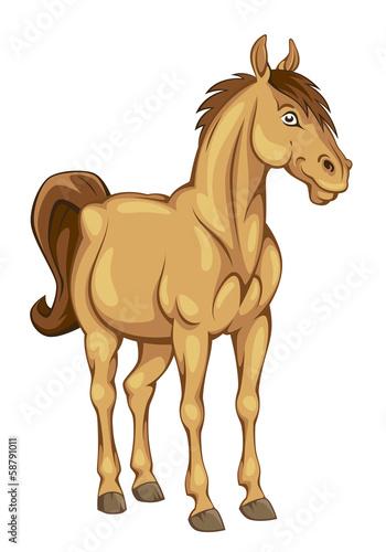 Funny pony