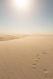 Ślady na piasku - 58791269