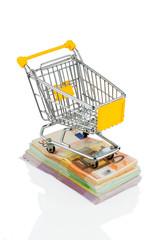 Einkaufswagen auf Geldscheinen
